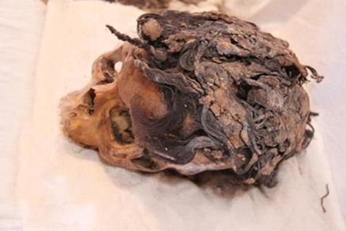Hộp sọ 3300 năm tuổi của một phụ nữ Ai Cập