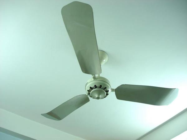 Quạt trần được treo trên trần nhà có thể làm mát một khu vực rộng lớn
