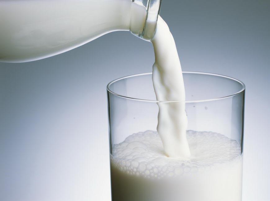 Sữa có nguy cơ gây gãy xương và tử vong cho người tiêu dùng