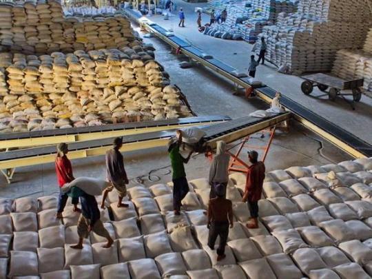 Dù chào giá kịch trần, doanh nghiệp vẫn sẽ bị lỗ do giá lúa gạo trong nước quá cao
