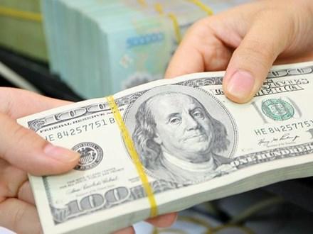 Trong khi giá vàng thế giới đi xuống thì đô la phục hồi