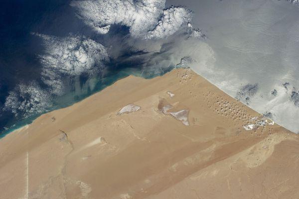 Gió từ phía Bắc đã tạo nên hình ảnh tuyệt đẹp này tại sa mạc Sahara
