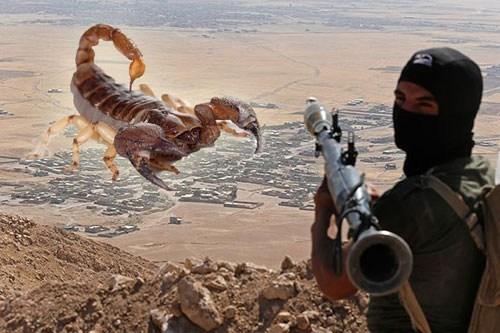 Khủng bố IS từng dội bom bọ cạp xuống Iraq