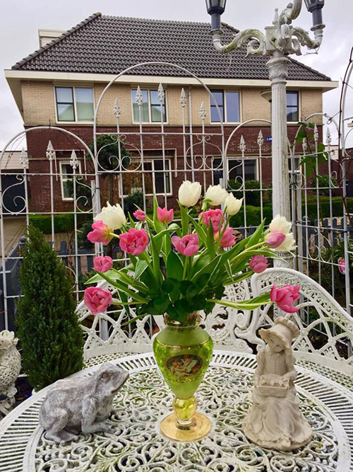 Ở Hà Lan thì tulips được ưu đãi, hợp khí hậu và đất nên ko phải chăm sóc kỹ. Đất ở đây là đất tự nhiên của sông ngòi 400 năm trước họ đã ngăn và hút nước ra, rất giàu dinh dưỡng và bây giờ thành nơi nông dân canh tác hoa màu chính của Hà Lan.