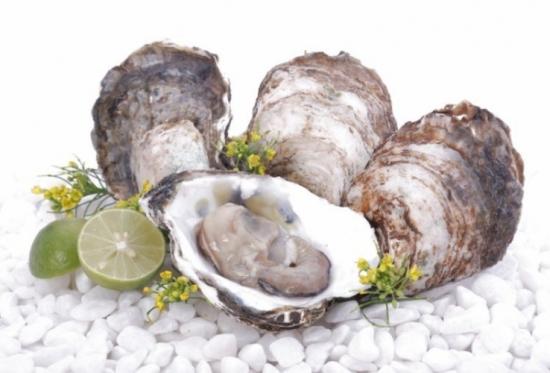 Động vật thân mềm như các loại hải sản rất dễ bị ngộ độc thực phẩm