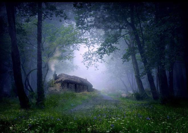 Ngôi nhà tranh đơn độc trong rừng tại Scotland.