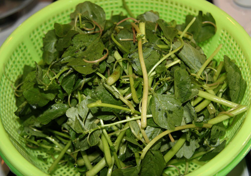 hạ nhiệt với canh cua rau dền