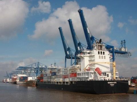Xuất, nhập khẩu hàng hoá tại cảng Cát Lái, Thành phố Hồ Chí Minh
