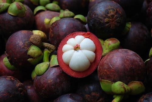 Cách chọn măng cụt thơm ngon, bổ dưỡng cho cả nhà với các mẹo đơn giản