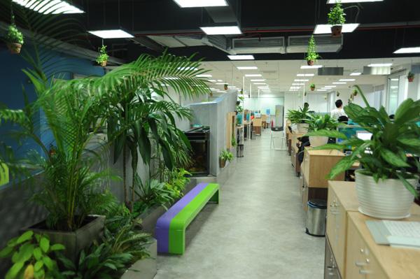 Nâng cao năng suất lao động của nhân viên trong không gian văn phòng có cây xanh