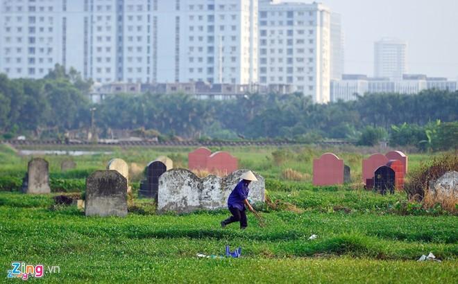 Nghĩa địa nằm trong ngõ 145, đường Cổ Nhuế (quận Bắc Từ Liêm, Hà Nội) từ lâu nay đã trở thành ruộng rau muống