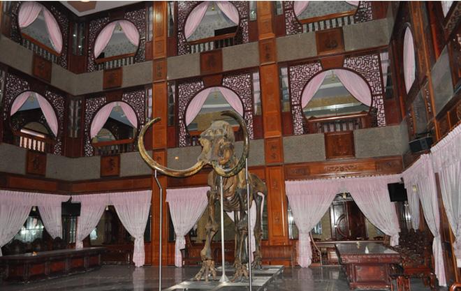 Bộ xương voi ma mút trong dinh thự của đại gia Trầm Bê. Ảnh: Người đưa tin