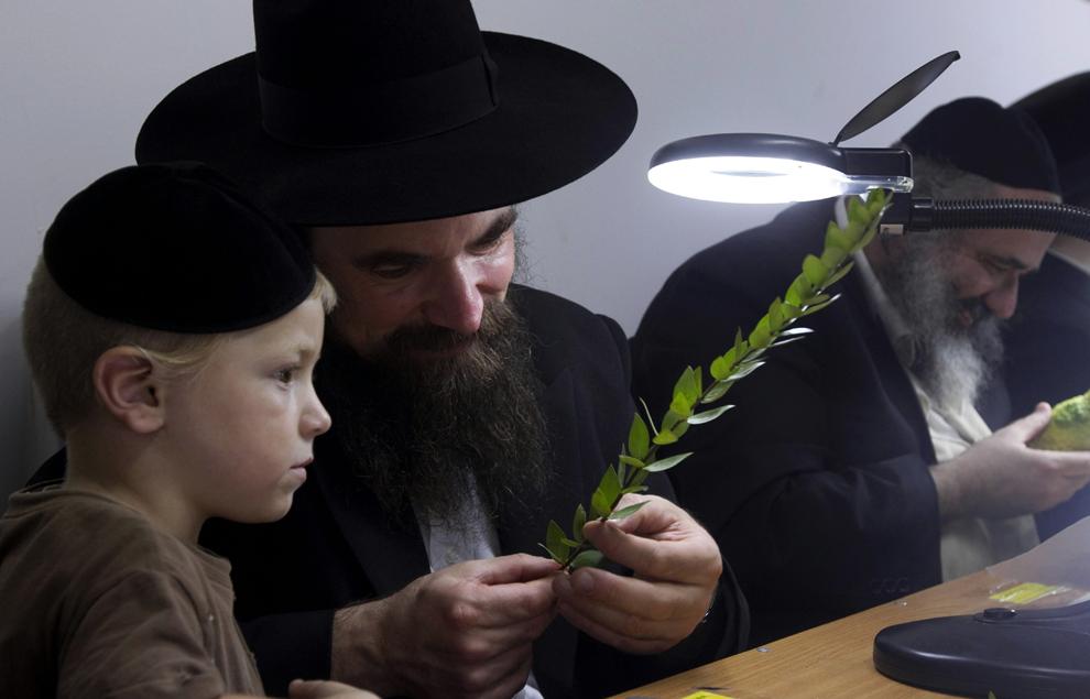 Giải mã bí mật khiến người Do Thái thông minh nhất thế giới - ảnh 2