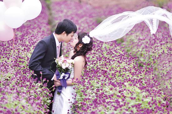 Địa điểm chụp ảnh Tết dương tại những vườn hoa Hà Nội
