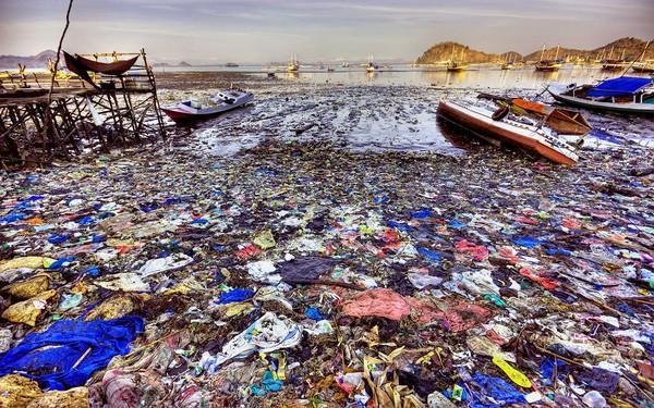 tưởng tượng 1 ngảy thế giới sạch bóng túi nilon