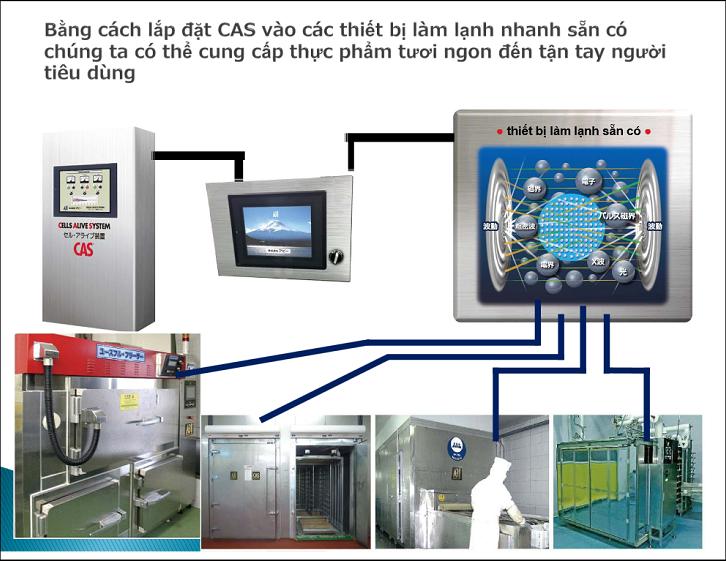Công nghệ CAS bảo quản thành công gạo tới 10 năm