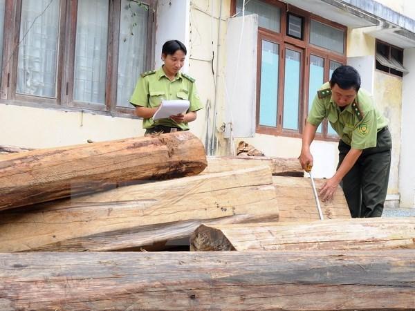 Số gỗ nhập lậu bị phát hiện thu giữ có xuất xứ từ Campuchia,