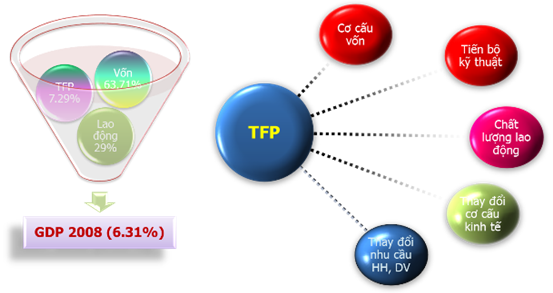 Yếu tố chính đóng góp vào tăng TFP