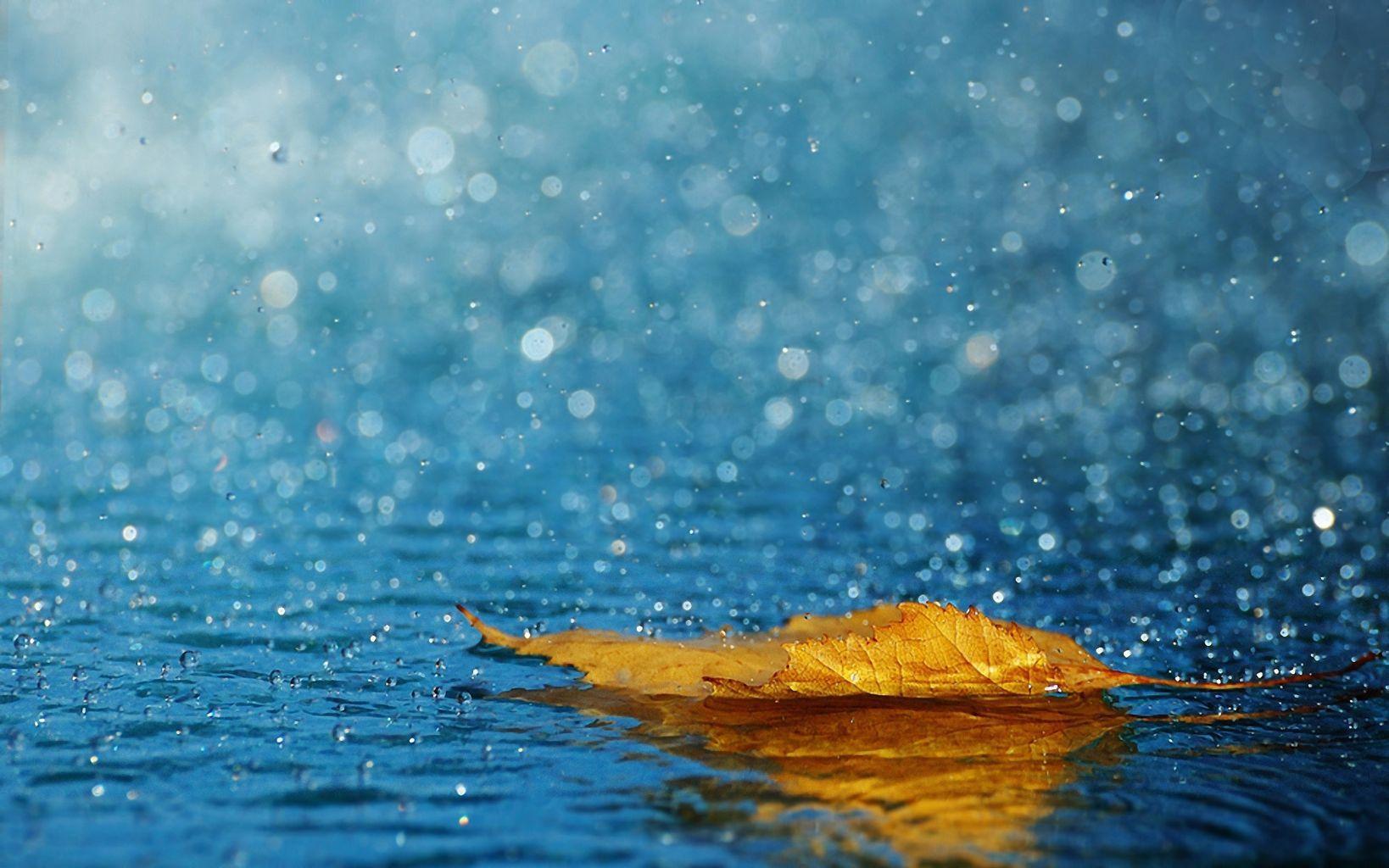 Dự báo thời tiết ngày mai 26/8: Bắc Bộ có mưa rào và dông rải rác
