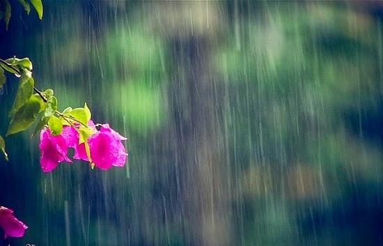 Dự báo thời tiết ngày mai 27/3/2016, khu vực Đông Bắc Bộ vẫn tiếp tục rét, có mưa nhỏ vài nơi