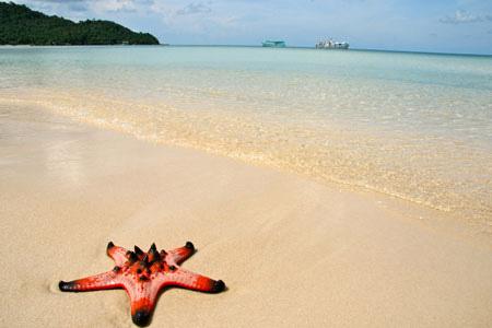 Đảo ngọc Phú Quốc, địa điểm du lịch trăng mật ngọt ngào cho các cặp đôi