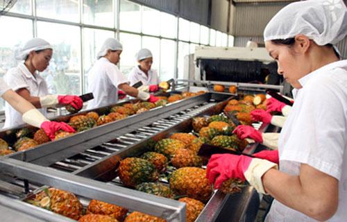 Nâng cao chất lượng nông sản xuất khẩu bằng công nghệ chiếu xạ