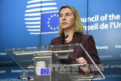 Hội nghị ngoại trưởng EU tập trung thảo luận tình hình chiến sự Syria và Trung Đông