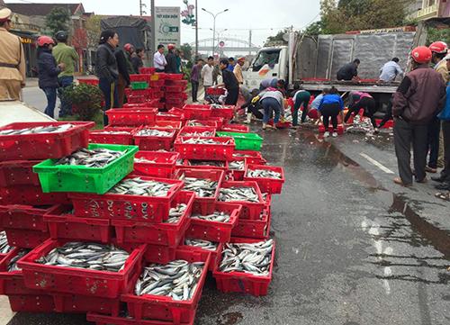 2 tấn cá đã được người dân xếp gọn gàng vào khay nhựa. Ảnh: Vnexpress