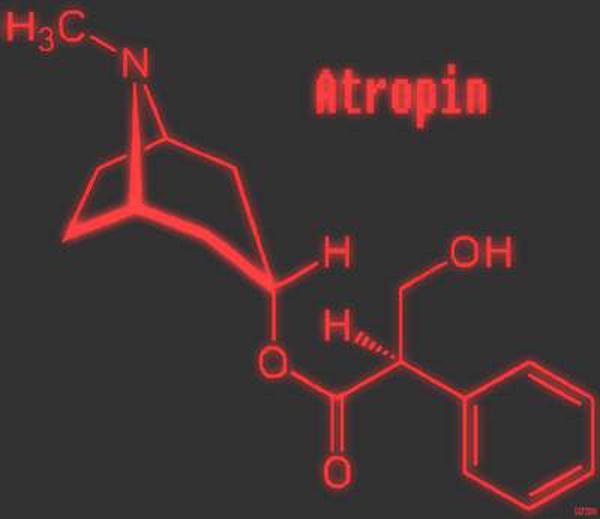 Cấu tạo phân tử của atropin. Ảnh: Sức khỏe & đời sống