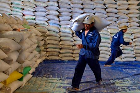 Thị trường lúa gạo trầm lắng do doanh nghiệp gặp khó đầu ra