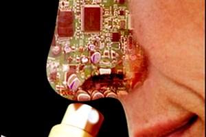 Mũi điện tử, thực phẩm nguy hiểm