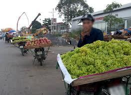 nho không hạt, nho giá rẻ, nho xanh, chợ phùng khoang