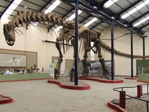 kỉ phấn trắng, sương khủng long, hóa thạch