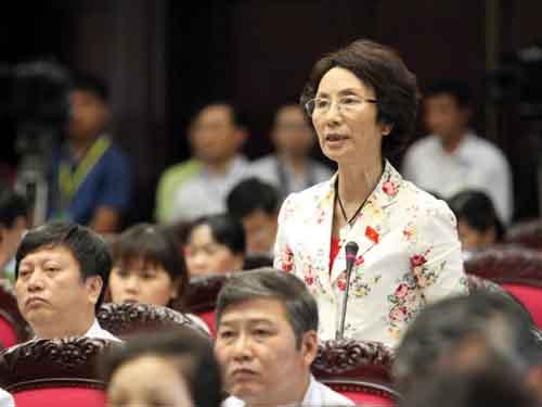 Đại biểu Quốc hội, thủ tướng, tăng quyền cho Thủ tướng, Tổ chức Chính phủ, Đại biểu Bùi Thị An