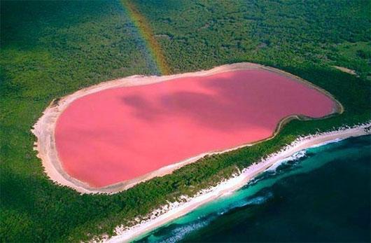 Màu hồng của nước hồ là 1 hiện tượng bí ẩn khoa học không thể giải thích