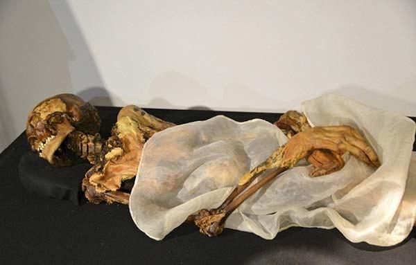 Có rất nhiều hiện tượng bí ẩn tồn tại quanh xác ướp công chúa Ukok