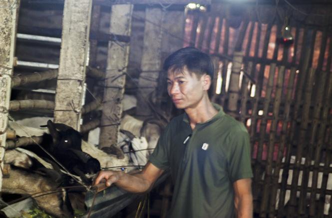 Nông dân đổi đời nhờ Làm giàu từ nuôi dê