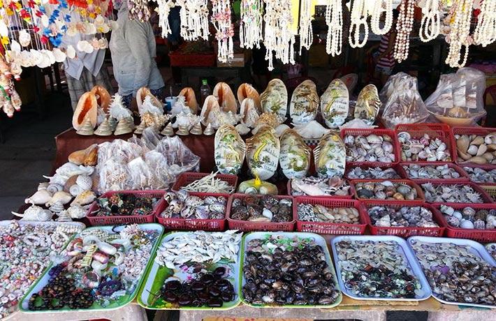 Kinh nghiệm du lịch Cù Lao Chàm đầy đủ, chi tiết nhất
