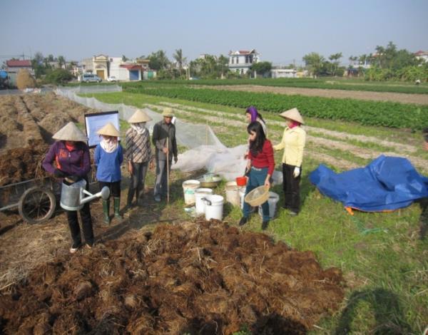 Ứng dụng công nghệ sinh học để sử dụng phế phẩm nông nghiệp