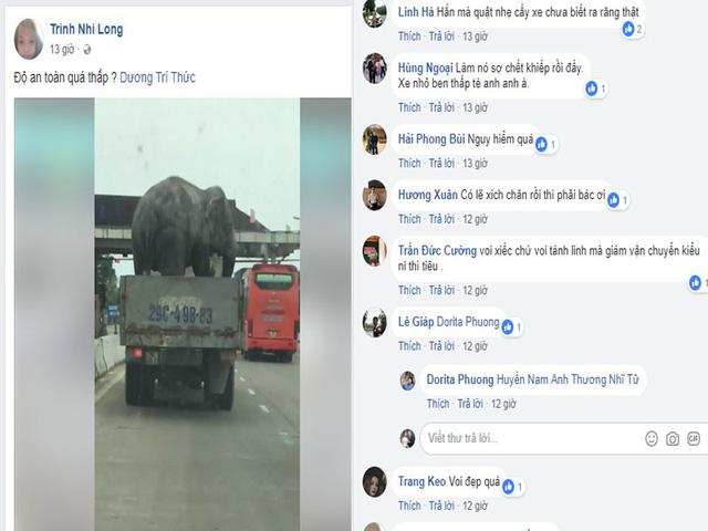 Người dân hãi hùng nhìn chiếc xe tải chở voi đi trên quốc lộ