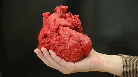 tim ở ngươiuf