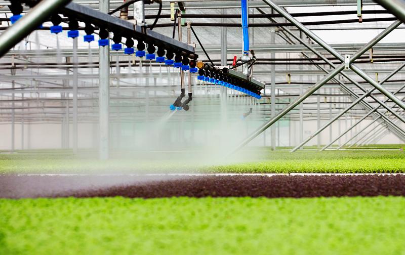 Khởi nghiệp trong nông nghiệp: Công nghệ là chìa khóa thành công  - ảnh 1