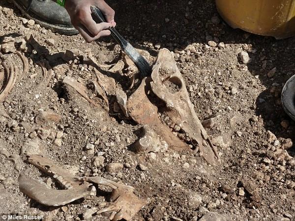 Các ngôi mộ sâu khoảng 2-3m ngay bên dưới lối vào cửa nhà
