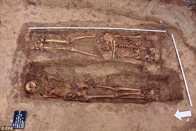 Các nhà khảo cổ học cho rằng những bộ hài cốt này thuộc về binh lính Napoleon
