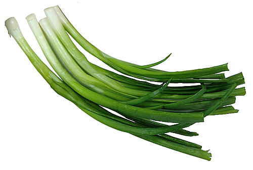 Hành lá là thực vật không thể thiếu trong nhiều món ăn
