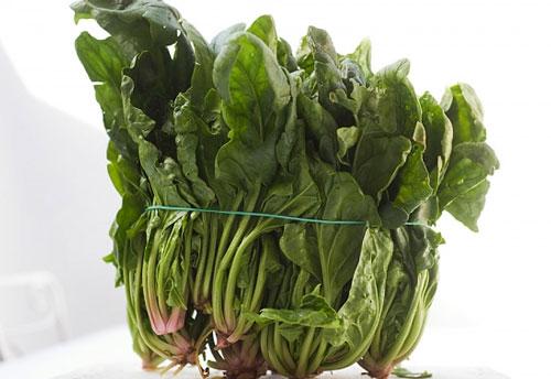 Thực hiện đúng kỹ thuật trồng cây rau chân vịt đúng cách sẽ thu hoạch được nhưng mớ rau tươi ngon, tốt cho sức khỏe