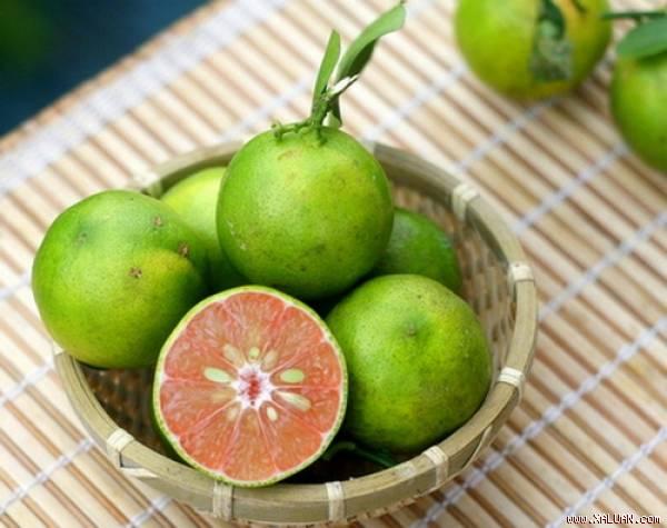 Chanh đào rất giàu axit citric và chỉ một ít nước chanh cũng có thể cải thiện hệ tiêu hóa