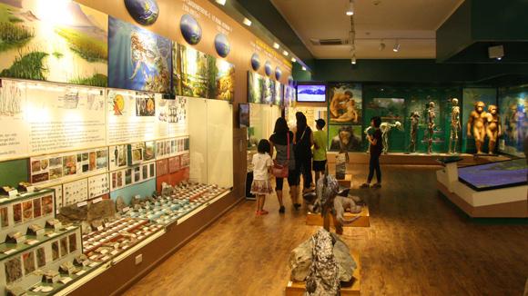 Khám phá thế giới muôn màu ở Bào tàng Thiên Nhiên Việt Nam