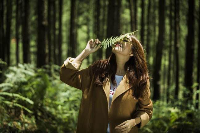 Cảnh quay trong rừng thông tại Đà Lạt của Thanh Hằng và Hà Anh Tuấn