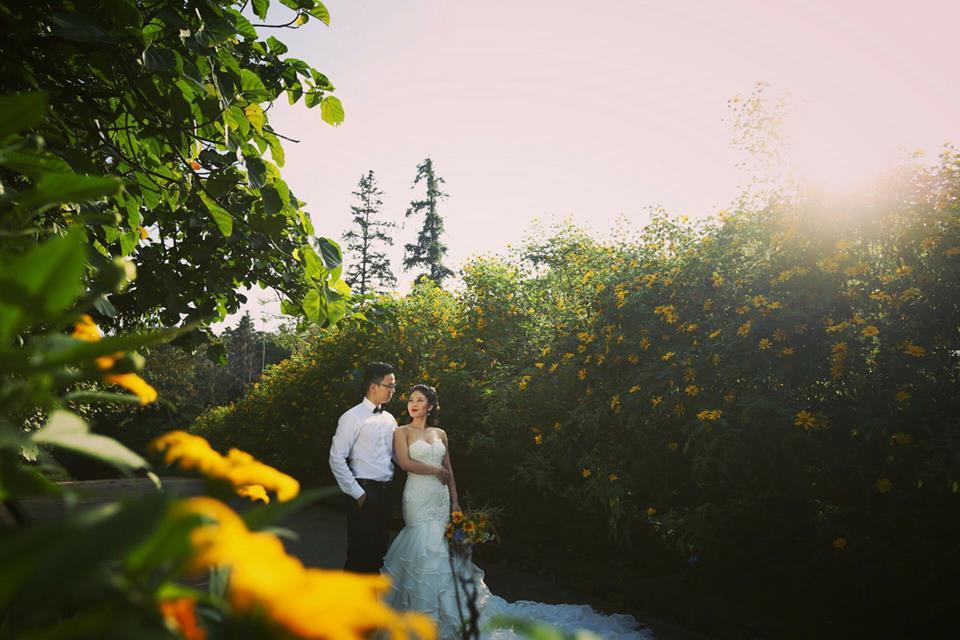 Địa điểm lý tưởng để chụp ảnh cưới cho các cặp đôi vào mùa thu này